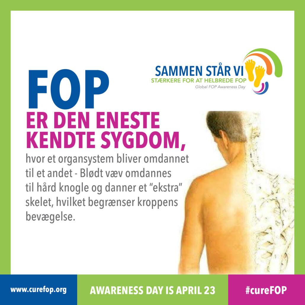 FOP er den eneste kendte sygdom, hvor et organsystem omdannes til et andet